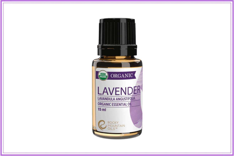 lavender oil for cold sores