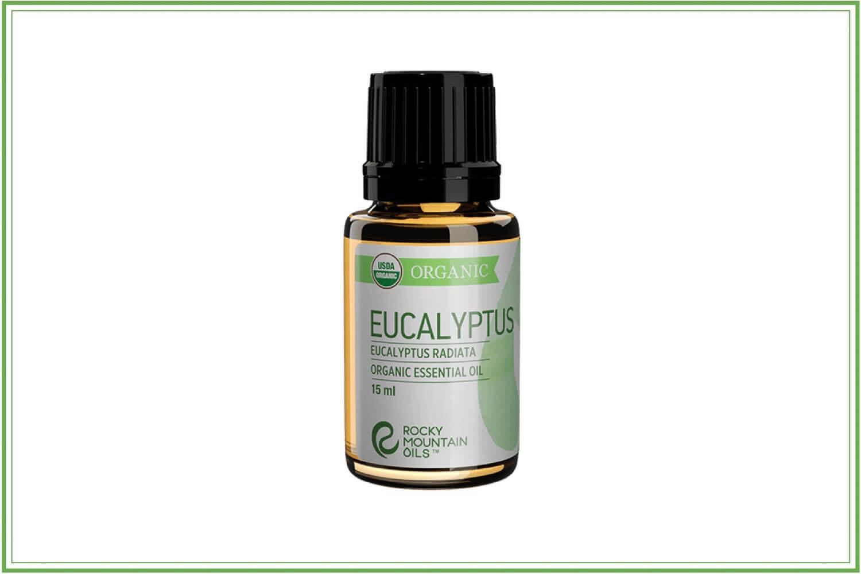 euclayptus for cold sores