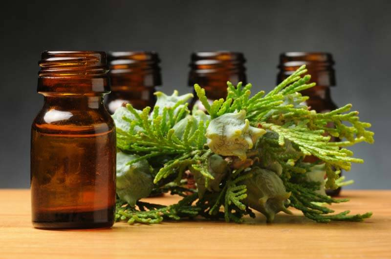 7 Cypress Essential Oil Benefits & Uses (Plus 8 Recipes, FAQ & Tips)