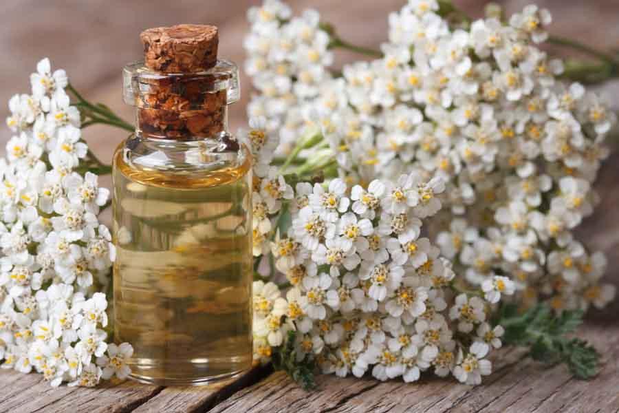essential oil bottle 5